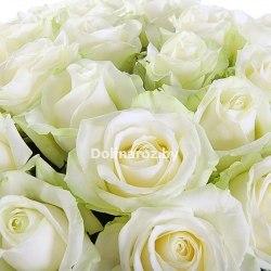 """Букет роз """"Отличный День"""" 31 роза"""