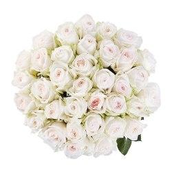"""Букет роз """"Оксара"""" 31 роза"""