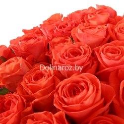 """Букет роз """"Вауу"""" 51 роза"""
