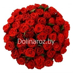 """Букет роз """"Эль Торо"""" 51 роза"""