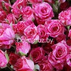 """Букет роз """"Полет"""" Кустовые розы"""