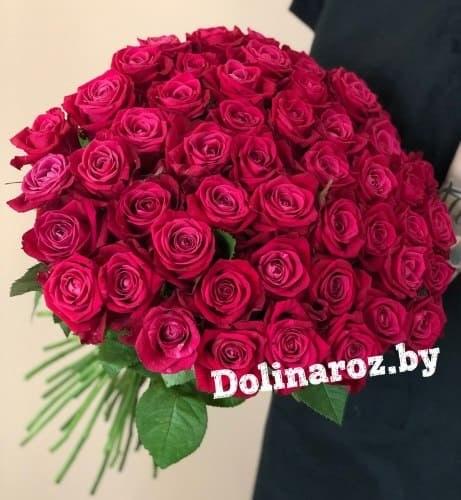 """Букет роз """"Мишель"""" 51 роза"""
