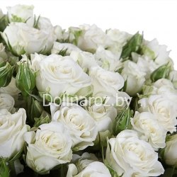 """Букет роз """"Искренность"""" Кустовые розы"""
