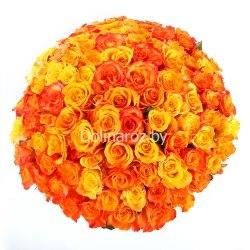 """Букет роз """"Жар-Птица"""" 101 роза"""