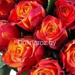 "Букет роз ""Атом"" 101 роза"