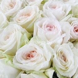 "Букет роз ""Ветер перемен"" 101 роза"