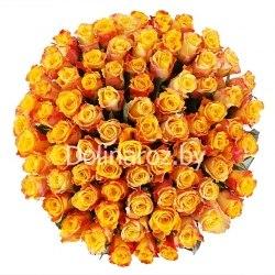 "Букет роз ""Мери Клер"" 101 роза"
