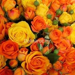 """Букет роз """"Выгодный"""" 101 роза"""