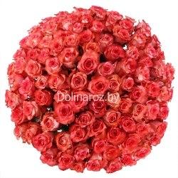 """Букет роз """"Счастье"""" 101 роза"""