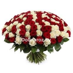 """Букет роз """"BigMiks"""" 201 роза"""