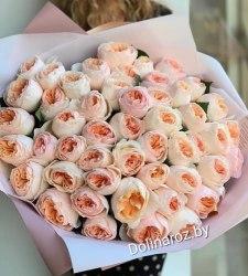 """Букет """"Vuvuzella"""" 51 роза"""