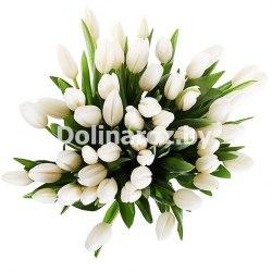 """Букет тюльпанов """"Для тебя"""" 41шт"""