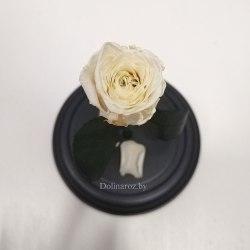 Роза в стеклянной колбе (белая) SuperMini