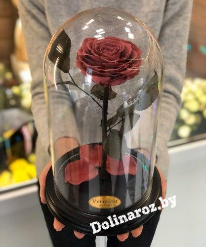 Роза в стеклянной колбе (фламинго) Premium