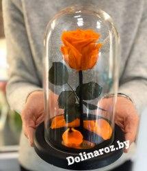 Роза в стеклянной колбе (оранжевая) Mini
