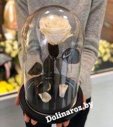 Роза в стеклянной колбе (белая) Premium