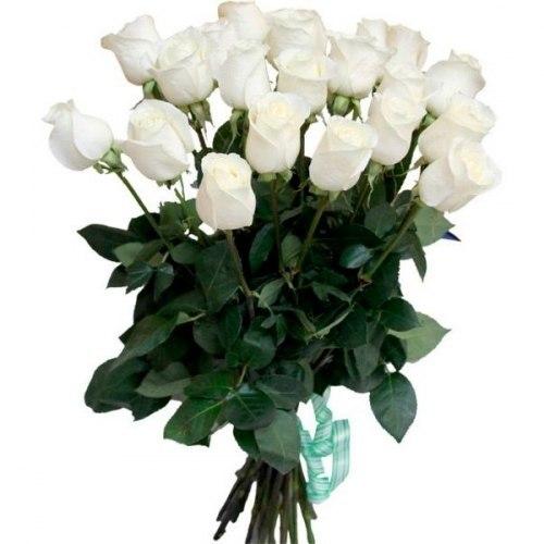 """Букет роз """"Akito"""" 15 роз"""