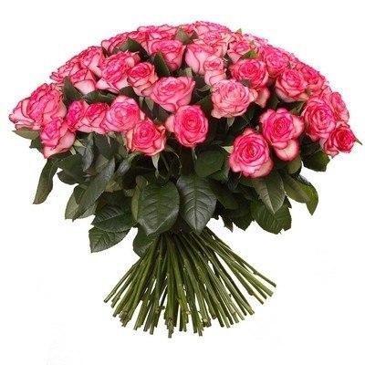 """Букет роз """"Джумилия"""" 51 роза"""
