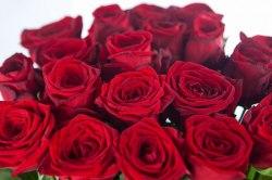 "Роза ""Ред Наоми"" РБ 10шт."