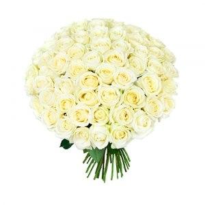 Купить цветы оптам оранжерея минск живые цветы в стеклянной вазе