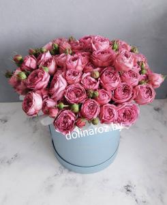 Красивые и сочные пионовидные розы в букете и в шляпной коробке недорого