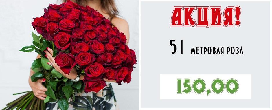 Купить Розы доставка, красные розы