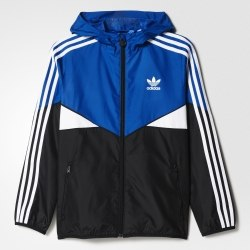 Ветровка Adidas J CLRDO WB Kids Adidas AJ0288