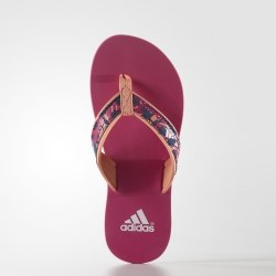 Сланцы Adidas Kids Beach Thong K Adidas S75570
