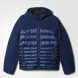 Куртка Adidas COSY DOWN JKT Mens Adidas AP9567
