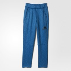 Брюки Adidas спортивные Kids YG AA CH ZNE PT Adidas AY5341