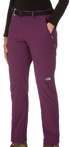 Брюки The North Face спортивные Womens W ROCA PANT The North Face T0A0WE-V6V