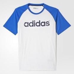 Футболка мужская M LG BSC RGLN T Adidas AK0963