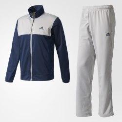 Костюм спортивный мужской BACK2BASICS TS Adidas BK4096