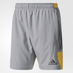 Шорты мужские Adidas BR3739
