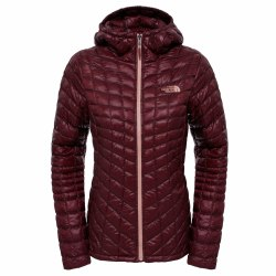 Куртка утепленная женская Women's ThermoBall™ Hoodie AW 16 The North Face T0CUC5-HBM