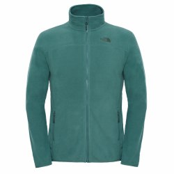 Кофта флисовая мужская Men's 100 Glacier Full Zip AW 16 The North Face T92UAQ-HCH