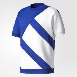Футболка мужская EQT BOXY CREW B Adidas BR3803