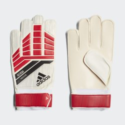 Перчатки вратарские PRE TRAINING Adidas CF1366