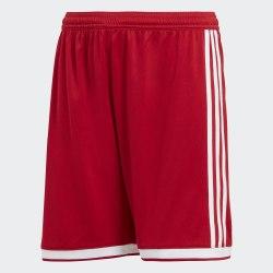 Шорты мужские REGISTA 18 SHOY Adidas CF9586