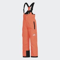 Брюки горнолыжные детские BG Slush Pants Adidas BR5972