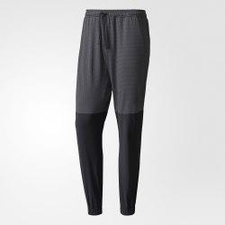 Брюки спортивные мужские EXTREME WO PANT Adidas BR8509 (последний размер)