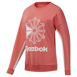 Джемпер женский CL FT BIG LOGO CREW BRGROS Reebok DT7245