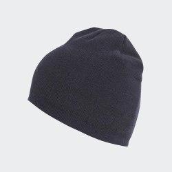 Шапка DAILY BEANIE LEGINK|WHI Adidas ED0313