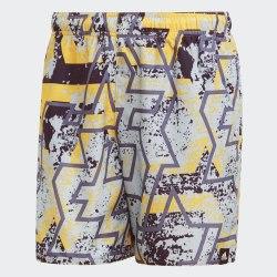 Мужские пляжные шорты STORY SH SL HIREYE Adidas DY6392