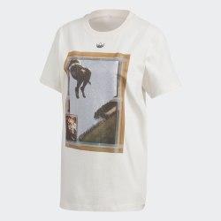 Женская футболка T SHIRT GRAPHIC CWHITE Adidas FM4340