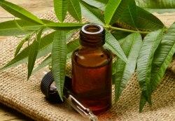 Олія ефірна чайного дерева Flora Secret