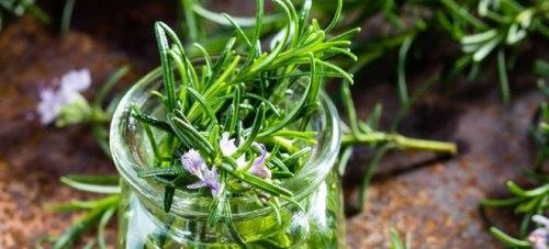 Олія ефірна розмаринова Flora Secret 10 мл