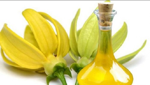 Олія ефірна іланг-ілангова Flora Secret 10 мл