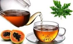 Чай з листя папайї Dried Papaya Leaf Tea