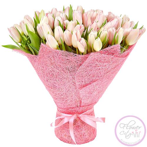 Тюльпан Розовый
